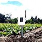 6345AU Davis Wireless Leaf & Soil Moisture/Temperature Station